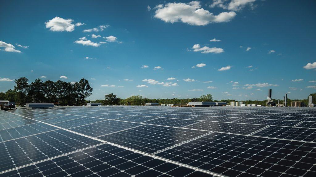 Solar panels at our Cheraw, South Carolina facility.